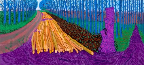 David Hockney's 'A Bigger Picture' Exhibition at London's Royal Academy of Arts Seeing the Wood for the Trees (9).JPG